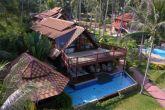 Coconut Paradise P3